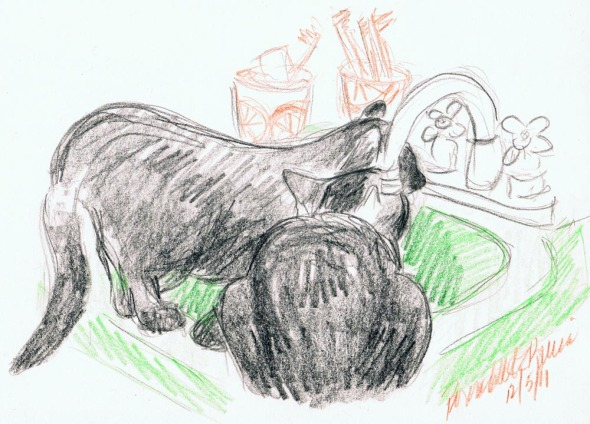 sketch of black cats at green sink