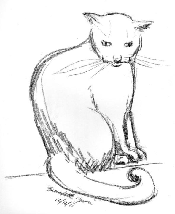 sketch of cat sitting