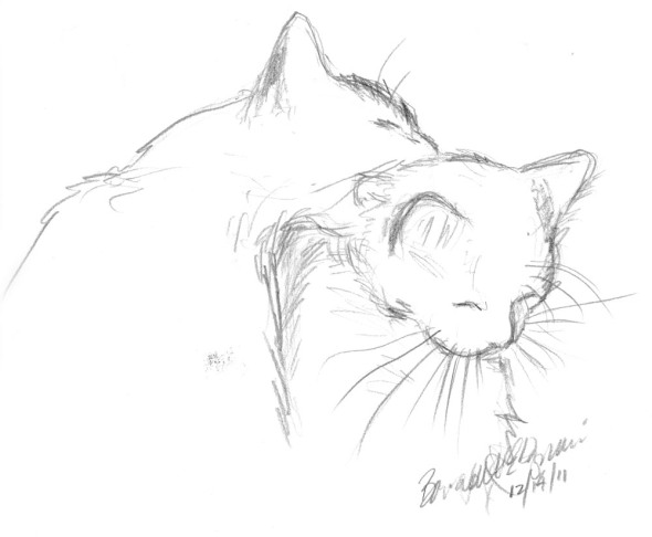 sketch of cats bathing