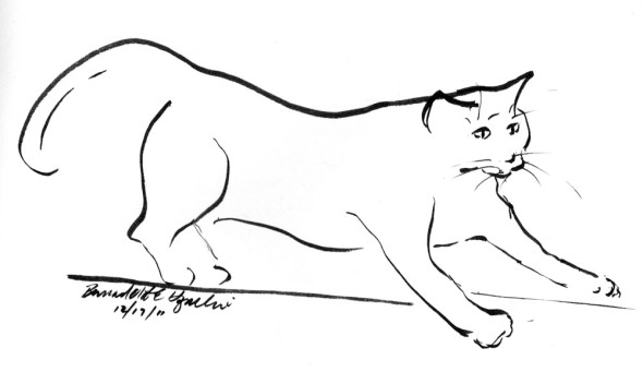 sketch of cat stretching