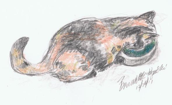 sketch of cat drinking