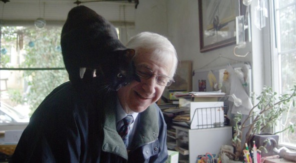 black cat on person's shoulder giving face rub