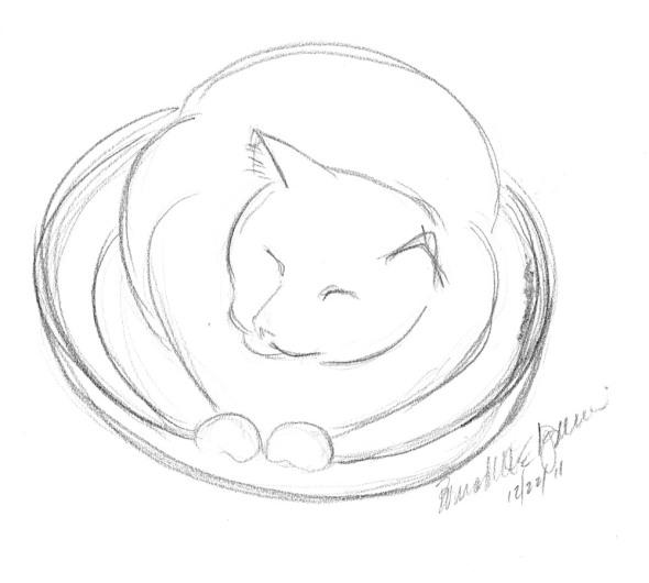 pencil sketch of round cat