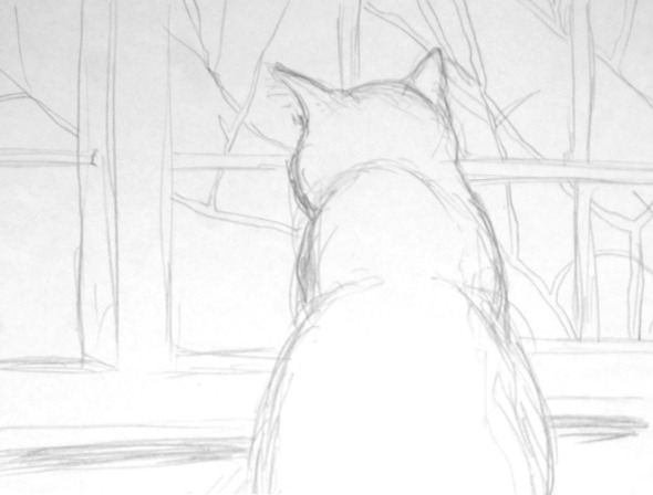 pencil sketch of cat at window