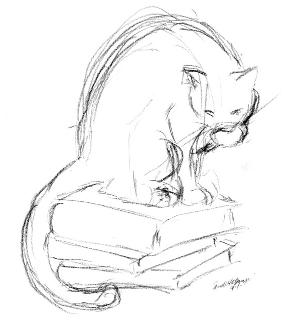 cat bathing on books