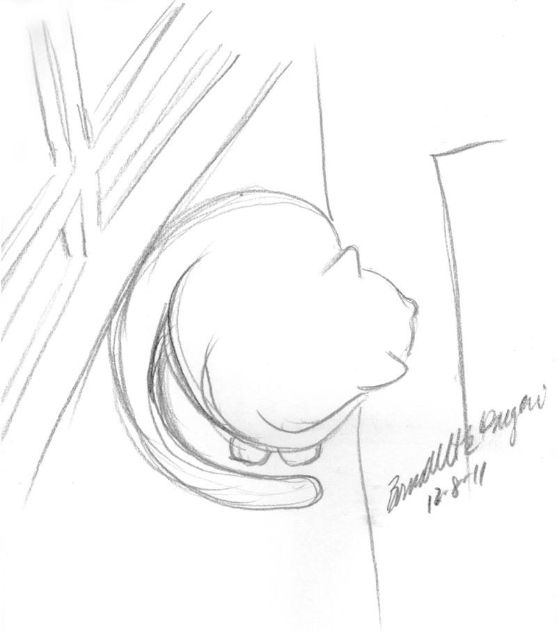 sketch of cat looking out a door
