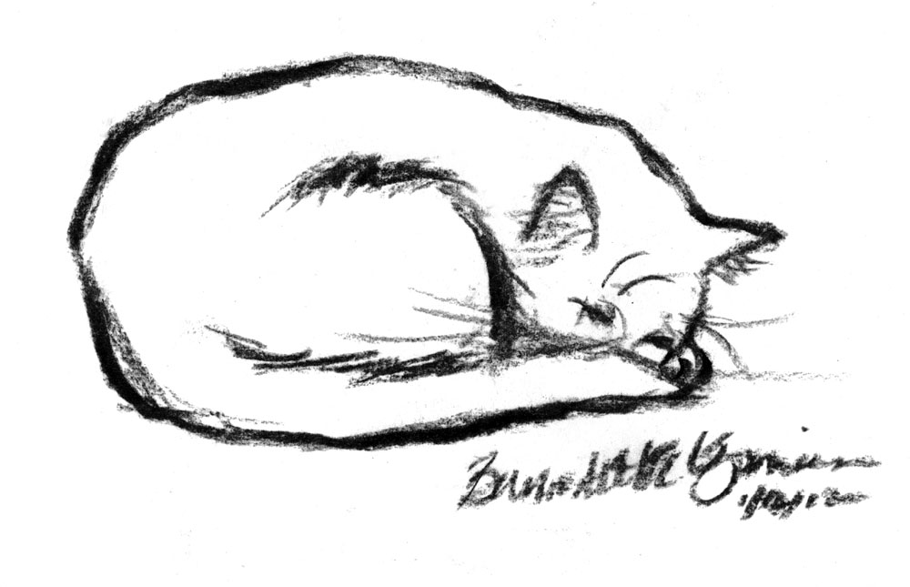 Cats Sleeping Bed Drawing