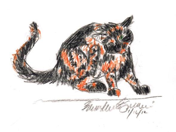 sketch of cat scratching