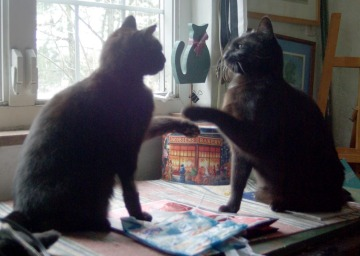 two black cats touching paws