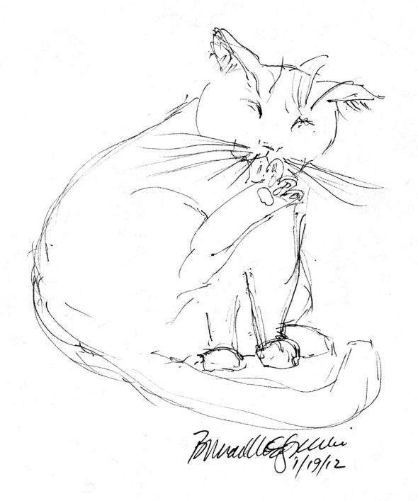 ink sketch of cat cleaning between toes