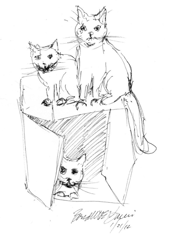 sketch of three cats with box