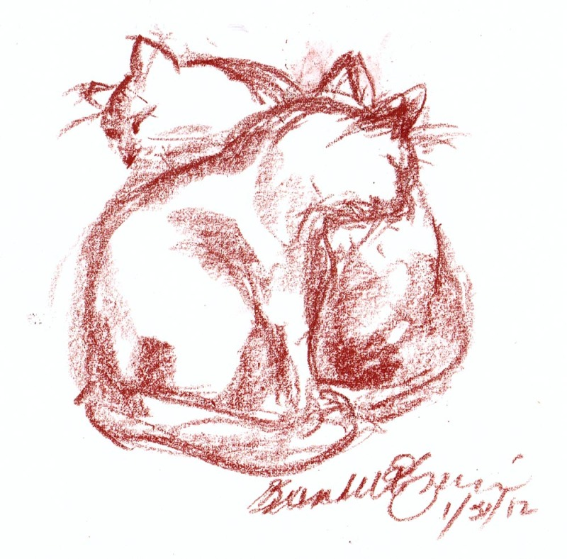 sketch of two cats bathing each other