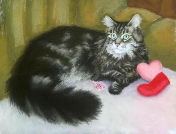 portrait of maine coon cat