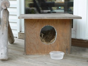 homemade outdoor cat shelter for feral cats and wildlife