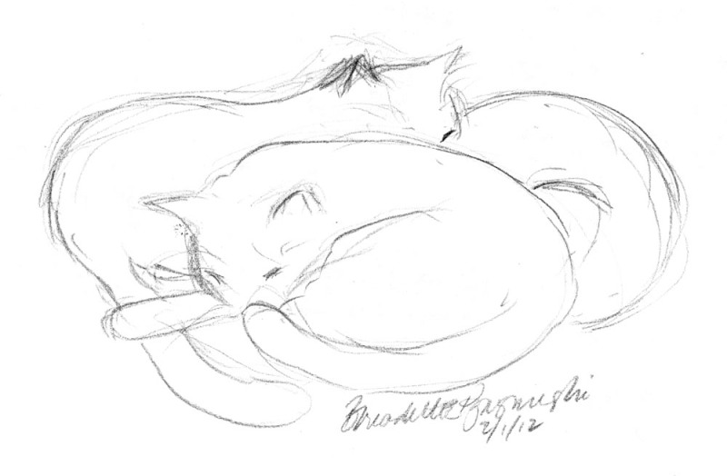 pencil sketch of cats sleeping