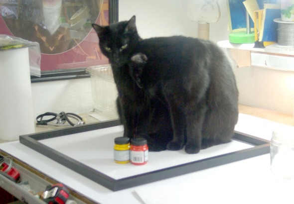 two black cats sitting in a picture frame