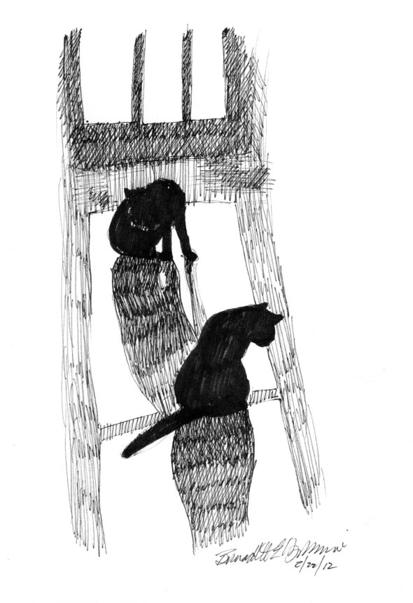 ink sketch of two cats on sunny floor