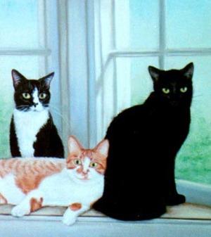 three cats in portrait