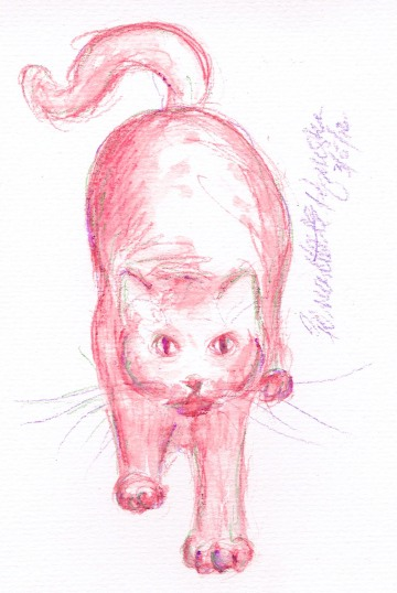 watercolor of cat stretching