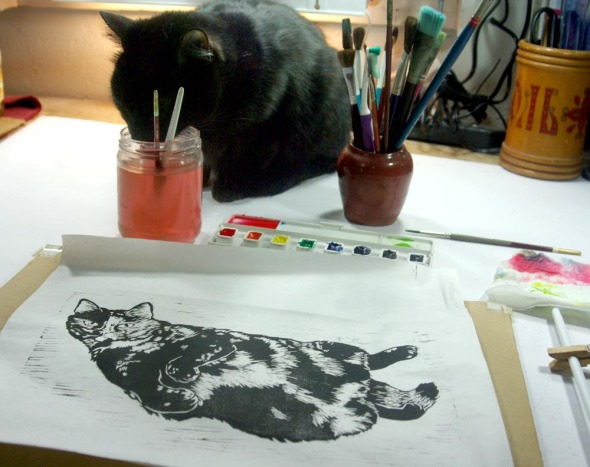 black cat drinking paint water