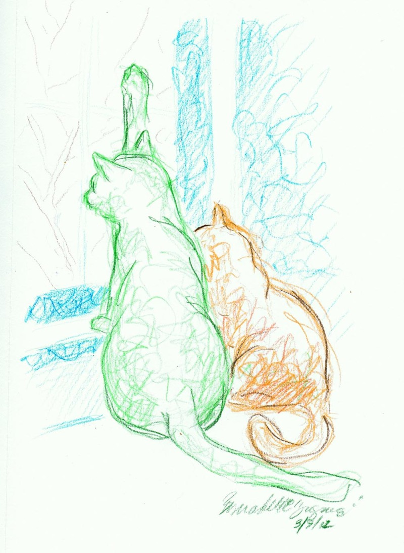 colored pencil sketch of two cats looking out the window
