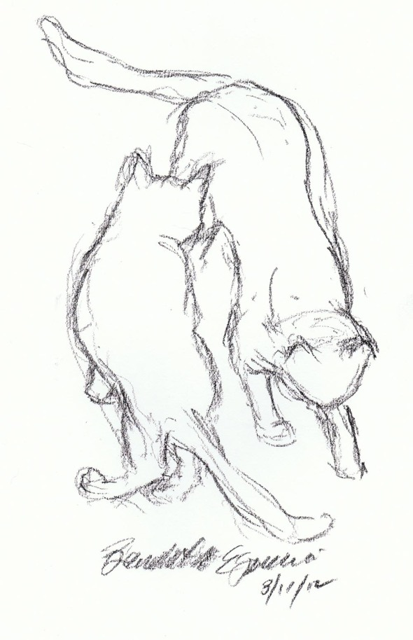 sketch of two cats passing each other