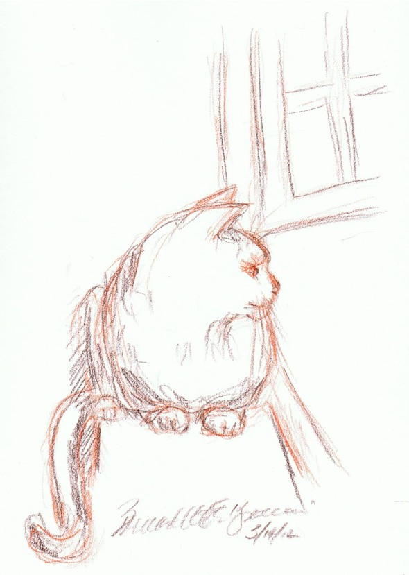sketch of cat on windowsill