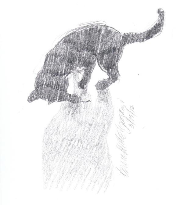 pencil sketch of cat playing in silhouette