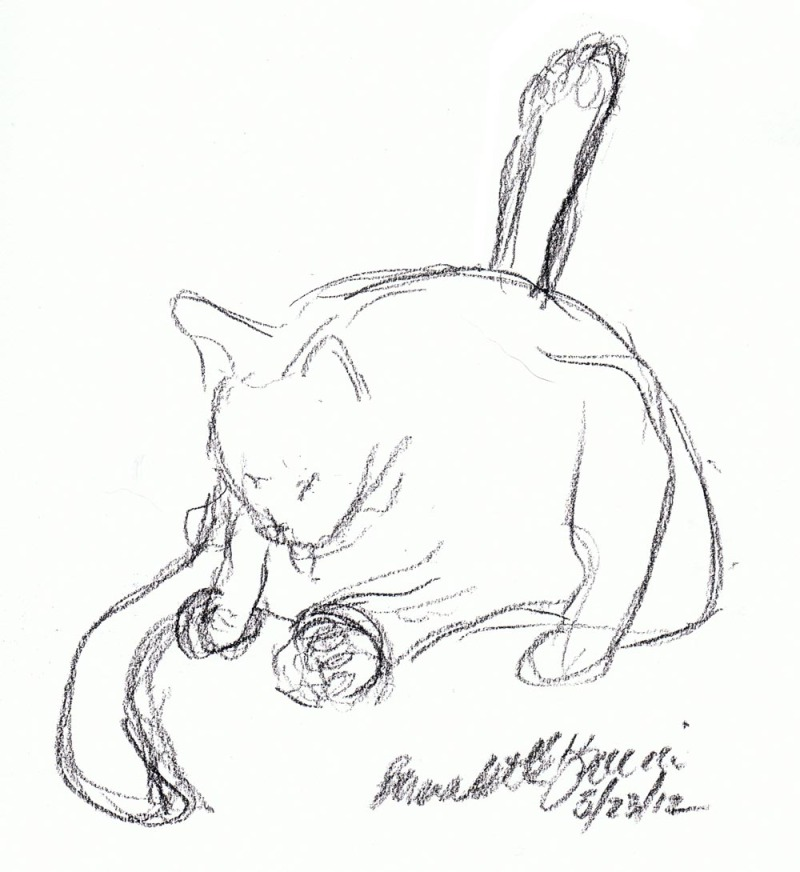charcoal sketch of cat with leg in the air
