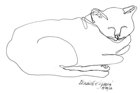 line drawing of cat