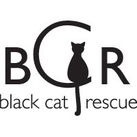 black cat rescue boston logo