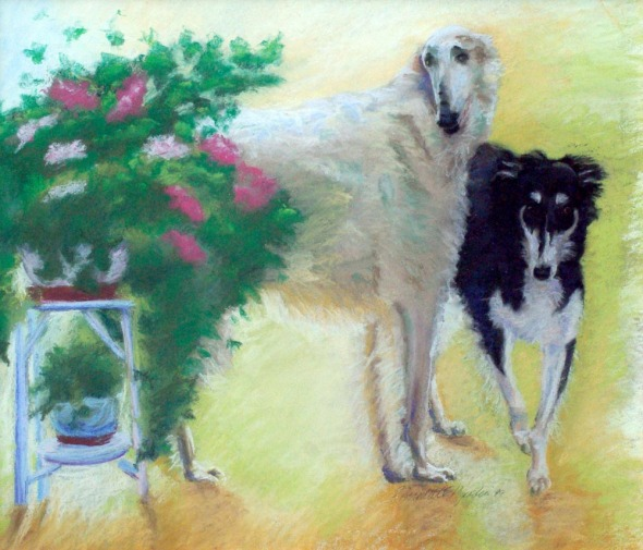 pastel painting of two borzoi dogs