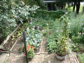 photo of section of backyard garden