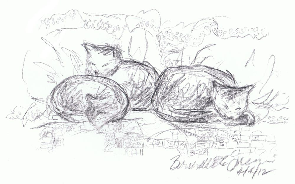 pencil sketch of three cats curled on bed