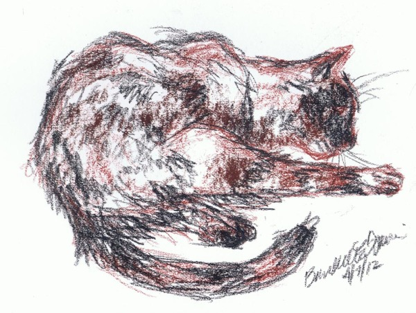 sketch of tortoiseshell cat washing her leg