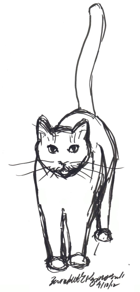 marker sketch of cat standing
