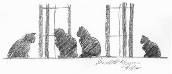 pencil sketch of four cats at a window