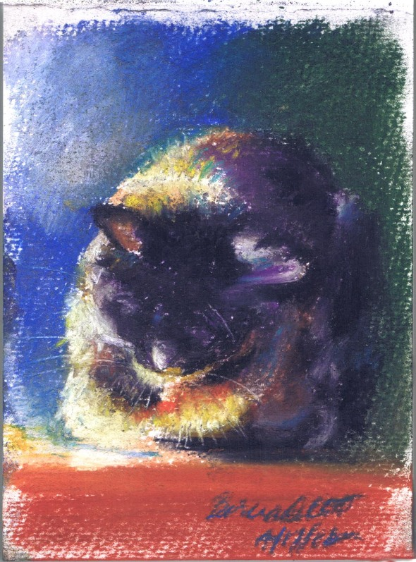 pastel painting of sleeping cat