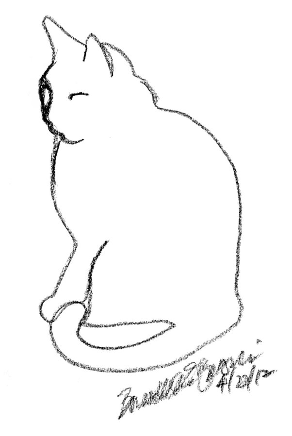 outline of cat