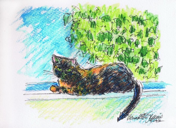 ink and watercolor of cat on windowsill