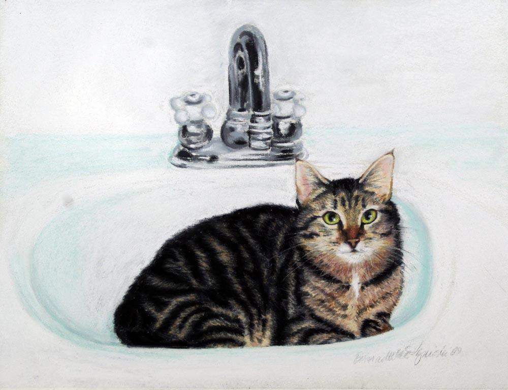 portrait of cat in sink