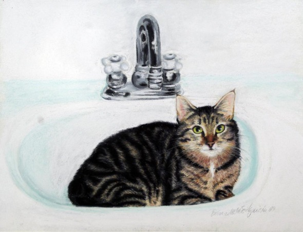 portrait of cat in sink
